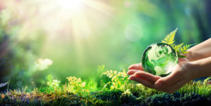 Hands Holding Globe Glass In Green Forest