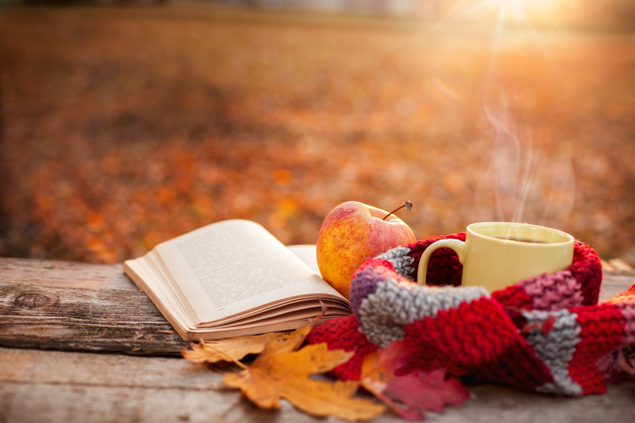 Book With Fall Leaves, Mug, And Scarf